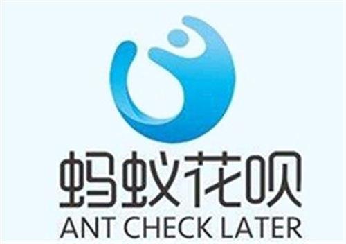 蚂蚁花呗上线新产品月月付可全年免息 电商 业界 第1张